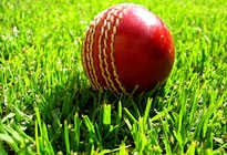 cricket_ball_205x140