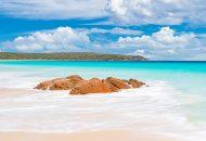 Neal Pritchard: Neal Print Bunker Bay Western Australia