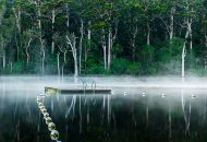 Neal Pritchard: A photo of Pemberton Lake Western Australia